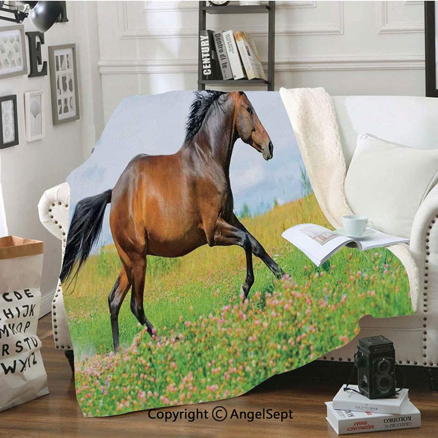 Luxury Velvet Blanket,Horse Runs Gallop on Flower Meadow Rural Freedom Animal Picture,80x60inch,for Sofa,Chair,Bedroom,Baby bluee Apple Green Brown