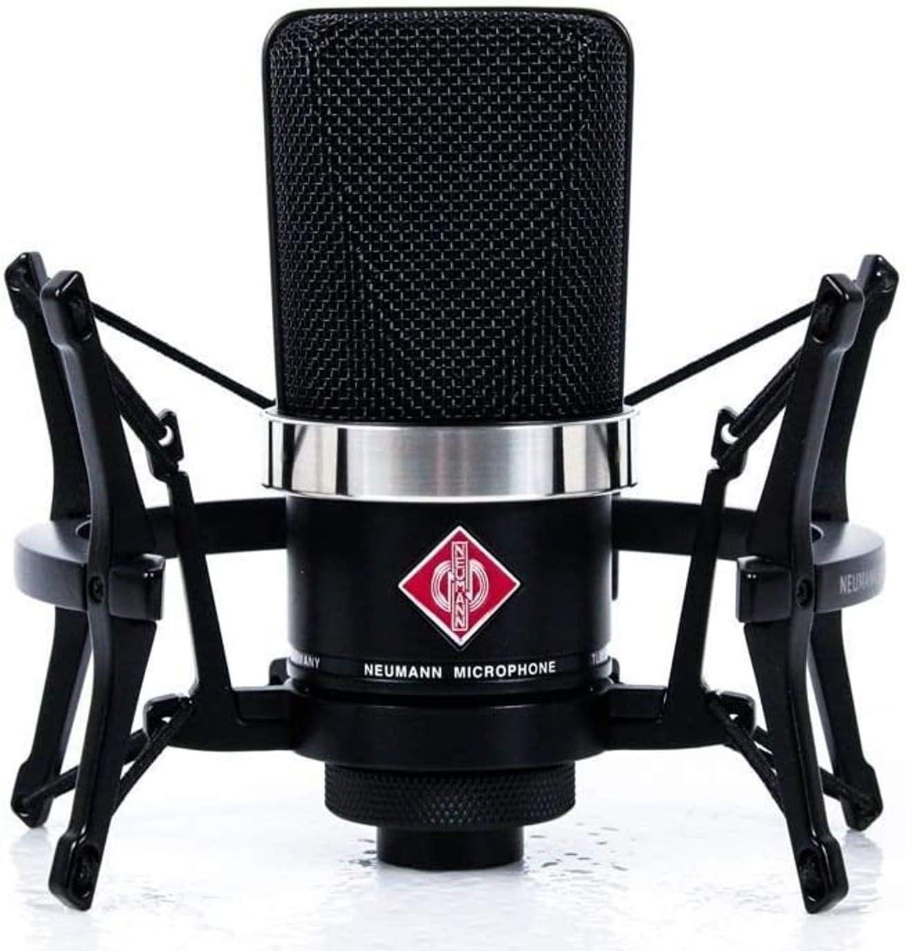 Neumann TLM 102 Microphone - Best Condenser Mic For Vocals