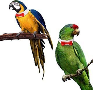 BWOGUE 4 Size Optional Adjustable Parrot Bird Collar Bow Tie Handmade Pet Bird Decorate False Collar Suit for Small to Large Parrot and Small Animals