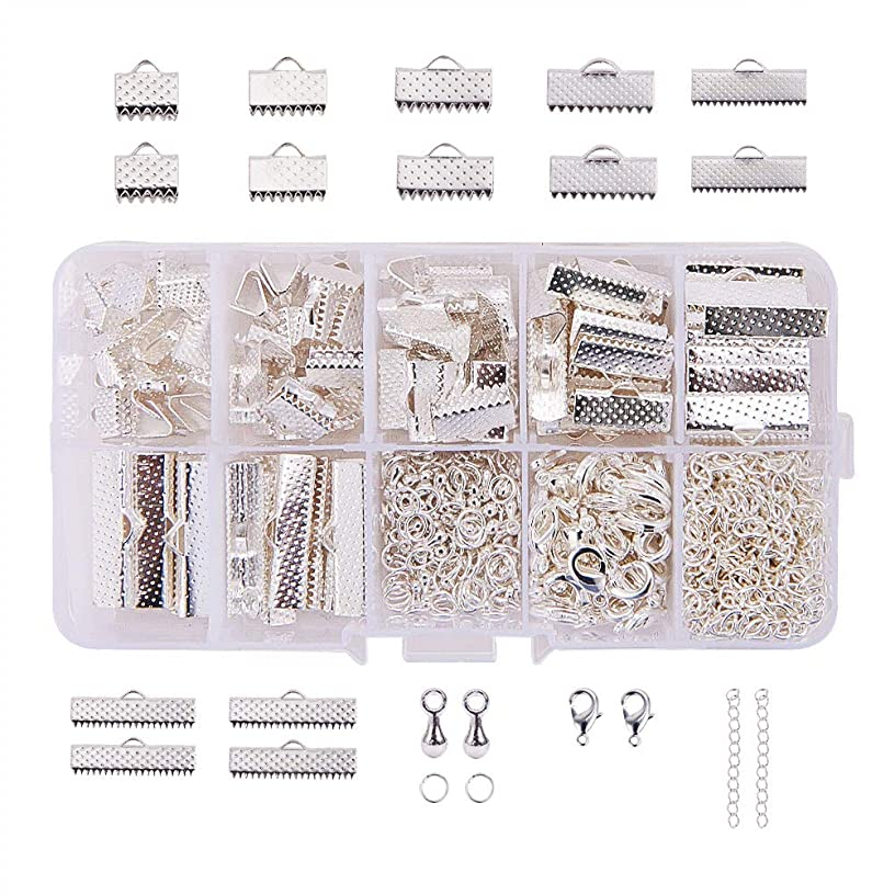 PandaHall Elite About 500 Pcs Jewelry Finding Kits with Ribbon Clamp End, Jump Ring, Lobster Claw Clasps, Extender Chain, Drop Ends for Jewelry Making Silver