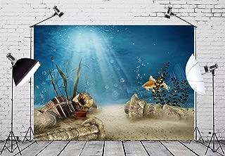 Best underwater shipwreck background Reviews