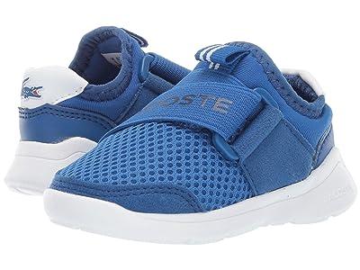 Lacoste Kids Lt Dash Slip 119 1 SUI (Toddler/Little Kid) (Blue/White) Kid