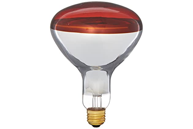 Awe Inspiring Best Heat Lamps For Bathroom Amazon Com Download Free Architecture Designs Scobabritishbridgeorg