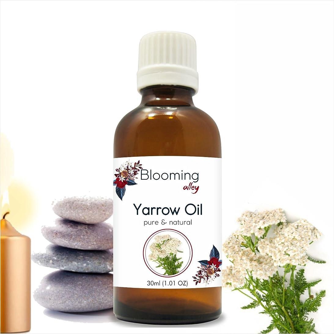 困ったおとうさんに沿ってYarrow Oil (Achillea Millefolium) Essential Oil 30 ml or 1.0 Fl Oz by Blooming Alley