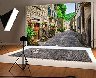 Laeacco 10x6.5ft Vinyl Backdrop Photography Background European Building Italy Street Typical Italian Small Provincial Town Tuscan Narrow Alley Flowers Stone House Scenery Travel Resort Spots Backdrop