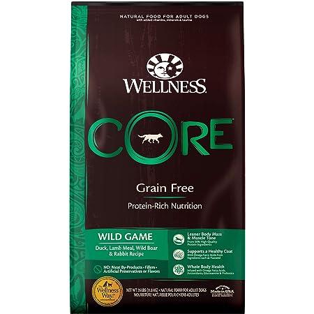 Wellness CORE Natural Grain Free Dry Dog Food, Wild Game Duck, Turkey, Boar & Rabbit, 26-Pound Bag