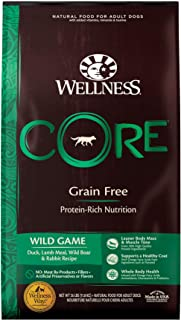 Wellness CORE Natural Dry Dog Food, Wild Game