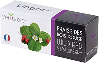 Lingot® Fragole di bosco - Compatibile con Orti Interni Véritable® ed Exky® - Ricarica pronta all'uso - Substrato con Semi...