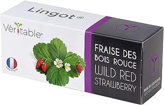 Véritable Lingot® Frutilla roja - Compatible con Huerto di Interior Exky® - Recarga Lista para Usar - Sustrato con Semilla...