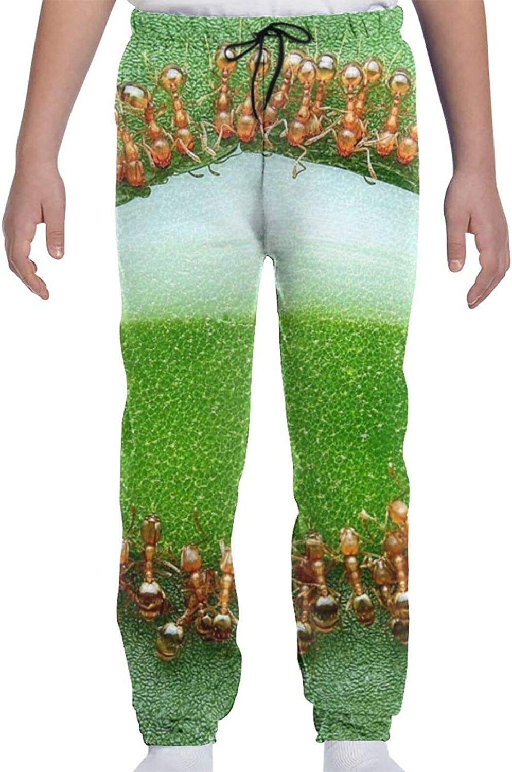 Oomato Ant Youth Sweatpants 3D Boys Teens Max 86% OFF Print Girls Max 82% OFF Trousers