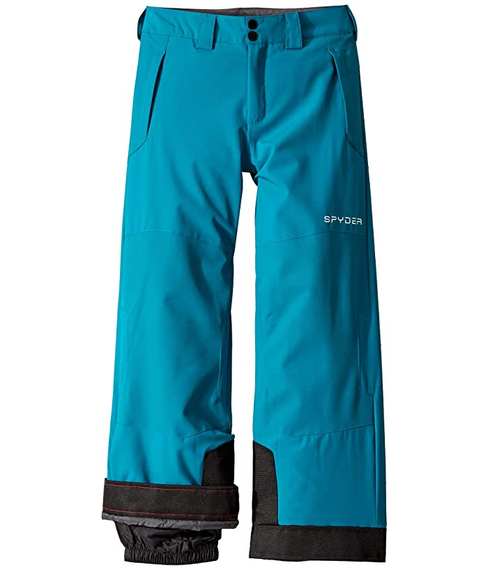 Action Pants (Big Kids) (Swell) Boy's Outerwear