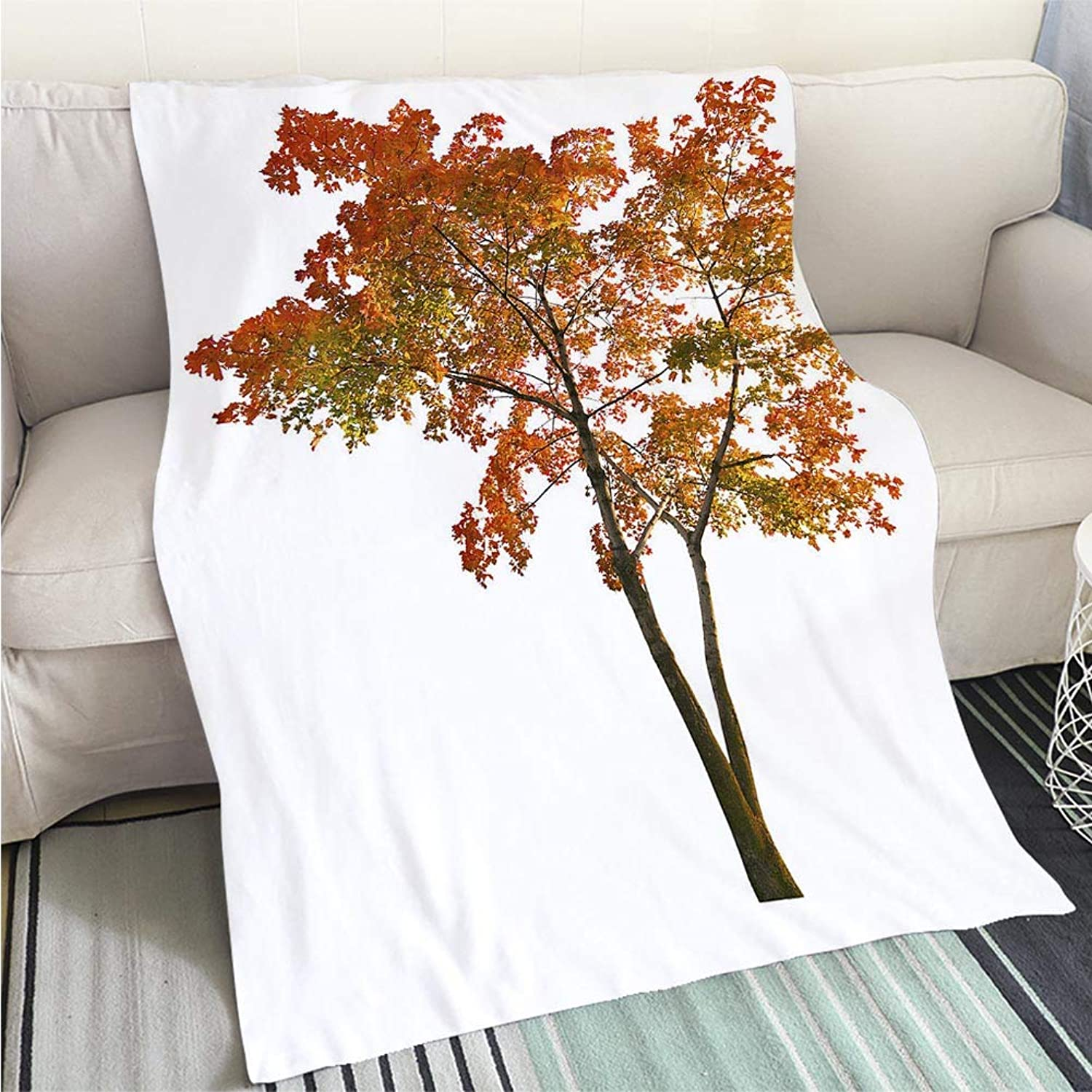 Comforter Multicolor Bed or Couch red Autumn Maple Tree isoalted on White Perfect for Couch Sofa or Bed Cool Quilt