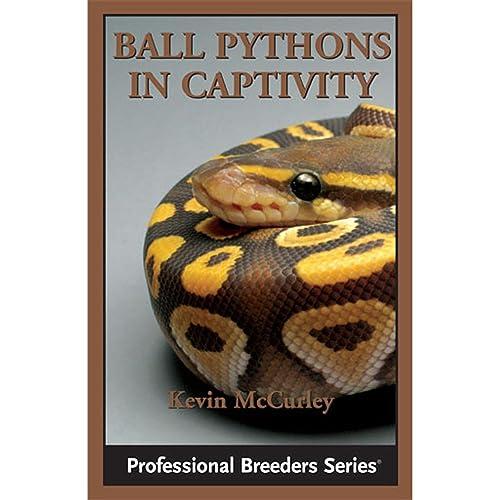 Ball Pythons: Amazon com