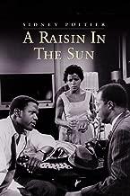 watch a raisin in the sun movie 2008