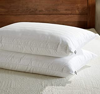 sleep factory premium down pillow