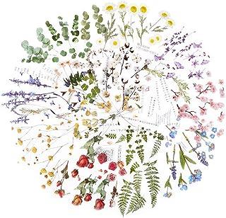 12 Feuilles Autocollants Stickers Motifs Fleurs Naturel Gommettes Décoratifs 110 x 150mm Etiquettes Adhésif de DIY Scrapbo...