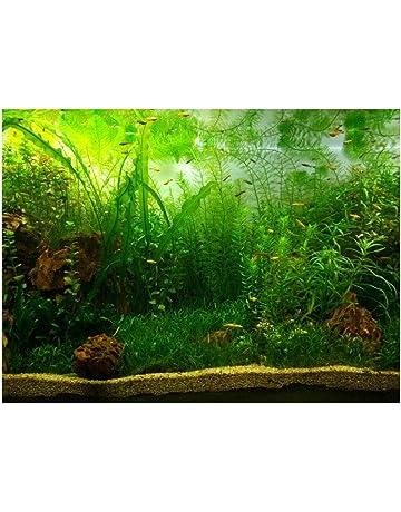 Carta Adesiva in PVC per acquari con Sfondo di Acquario OKBY Poster di Acquario 61 * 41cm