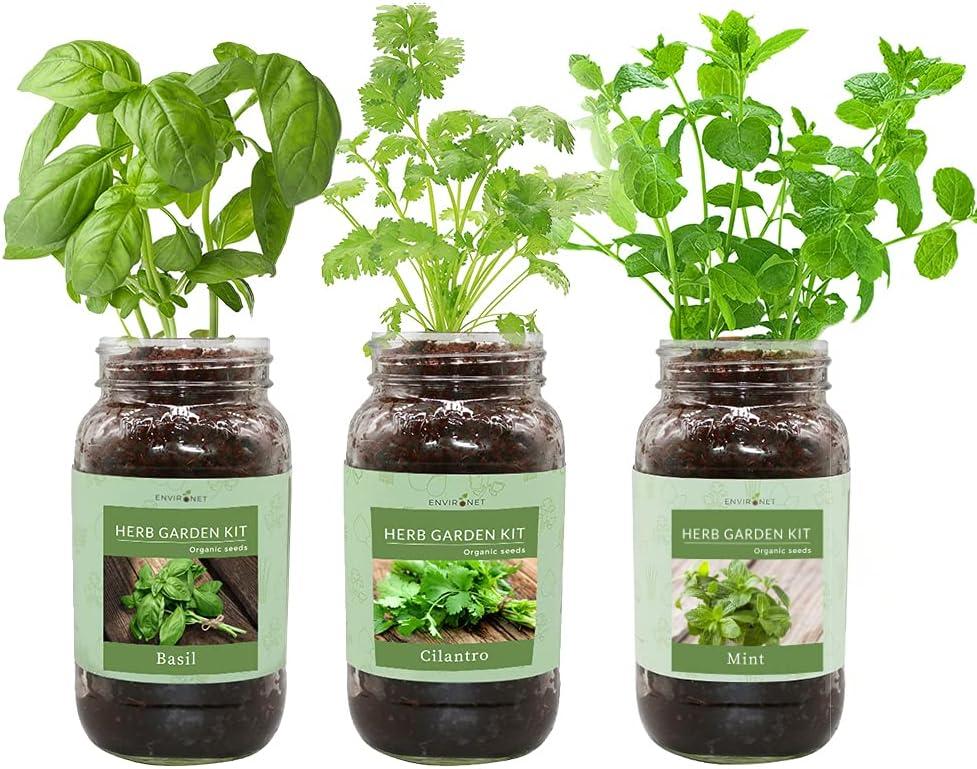 Environet Herb Gift Set Mason Max 83% OFF Max 78% OFF Garden Jar Kit Starter Indoo