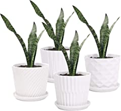 Plant Pots - 5.5 Inch Cylinder Ceramic Planters with Connected Saucer, Pots for Succuelnt and Little Snake Plants, Set of ...