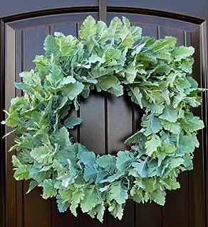dusty miller wreath