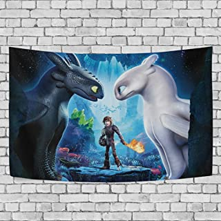 TRE ONE How to Train Your Dragon Black an White Dragons Tapestry Wall Hanging Decoration..