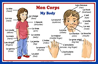 French Language School Poster: French Words About Parts of the Body with English Translation - Classroom Chart