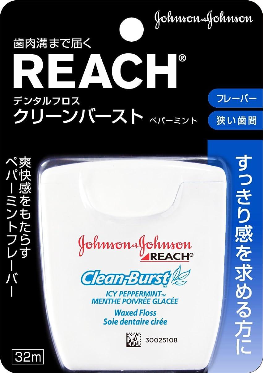 スタウトドロー草REACH(リーチ) デンタルフロス クリ-ンバ-スト ペパーミント 32m