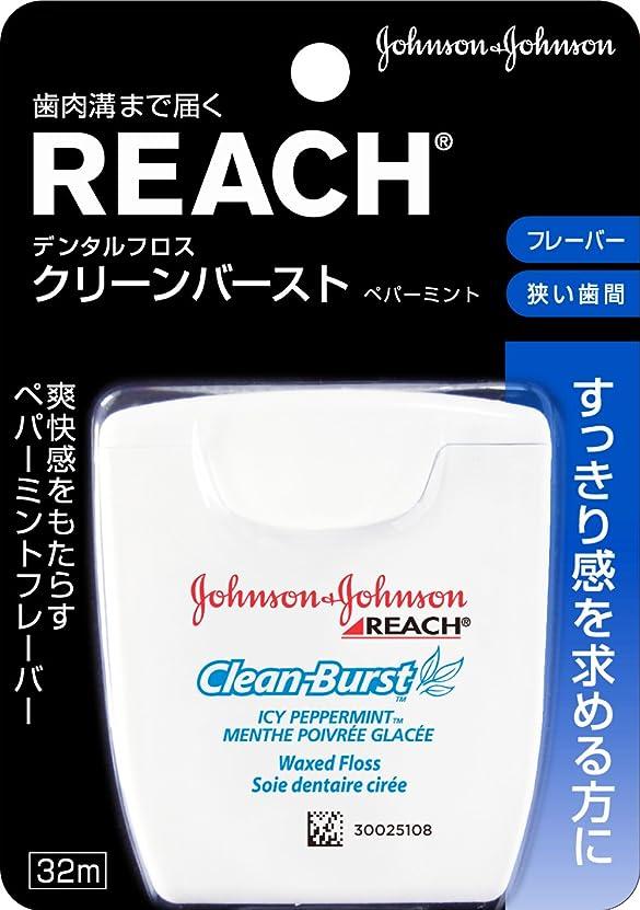 モノグラフトランクライブラリ立場REACH(リーチ) デンタルフロス クリ-ンバ-スト ペパーミント 32m