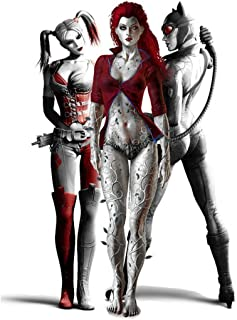 NewBrightBase Catwoman Harley Quinn Poison Ivy Fabric Cloth Rolled Wall Poster Print - Size: (16