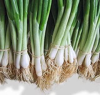 Best he shi ko bunching onion Reviews