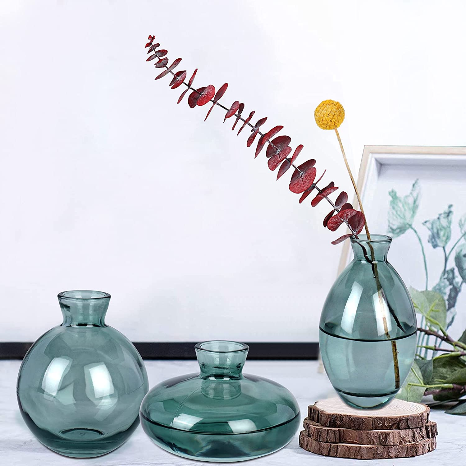 Small Glass Vases for Flowers Max 77% OFF Decor Ins of Decorat online shop Modern Set 3