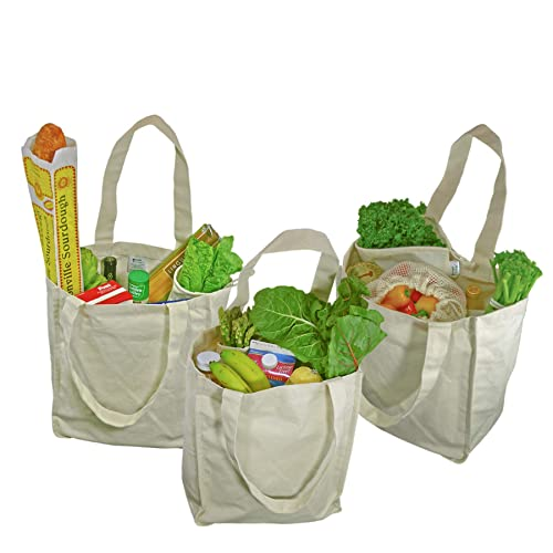 9974ce712a Simple Ecology Organic Cotton Deluxe Reusable Grocery Shopping Bag with  Bottle Sleeves - Natural 3 Pack