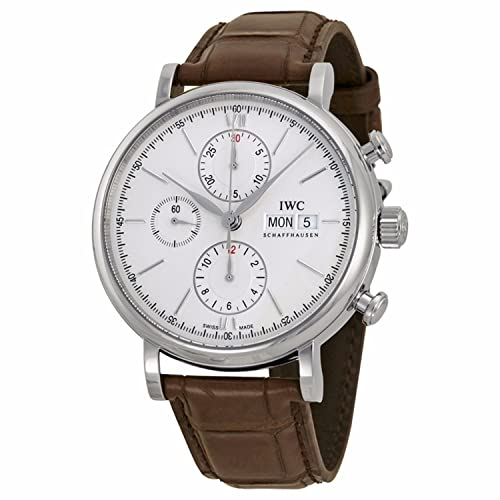 IWC Mens Quartz Watch with Stainless Steel Strap, Brown (Model: IW391007