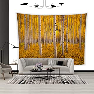 BEISISS Art Fabric Wall Hanging Tapestry Autumn Aspen Tree Forest in The Rocky Mountains CO Tapestry Decor Bedroom Living Room Dormitory Wall Tapestry-60x50in