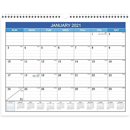 Brillie Calendario 2021 da Muro Planner Mensile Cancellabile 30x43cm Planning annuale mensile per Ufficio