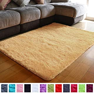 PAGISOFE Super Soft Shaggy Accent Area Rug Plush Rugs Carpets for Living Room Bedrooms Kids Nursery Home Decor Fluffy Shag Dining Floor Carpets Silky Fuzzy Fur Rug 5x4 Feet (Orange)