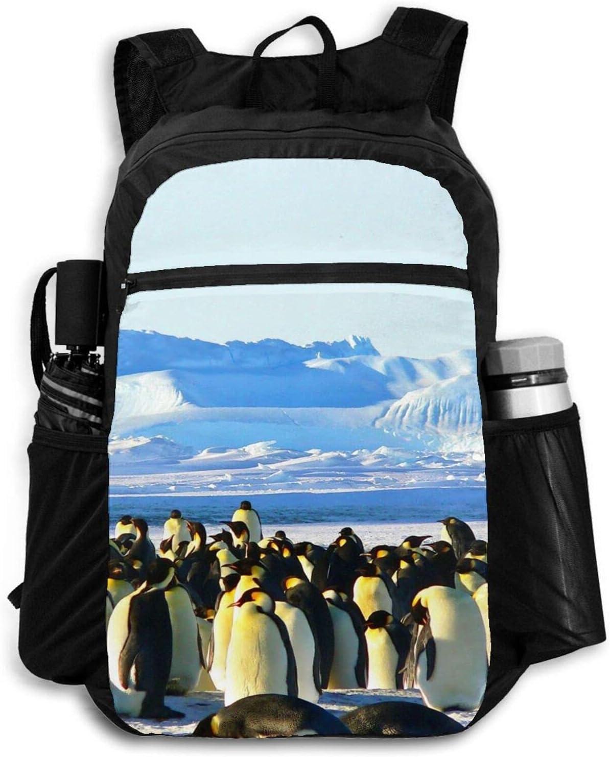 Zolama Penguins Backpacks for Washington Mall Women Men Packable Max 90% OFF Li Daypack Cute
