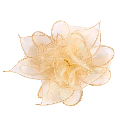 9474177f7f1ba LeahWard Women's Fascinator Hat Bridal Feather Hair Clip Accessories  Cocktail Party 755
