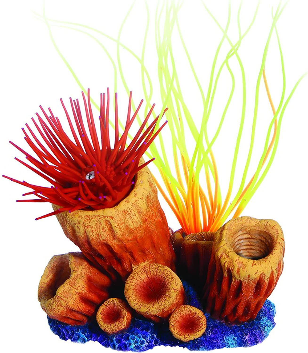 Seaflower, Fire Coral Small, Anenome, Red, NA