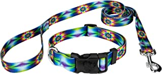 Country Brook Design - Deluxe Dog Collar & Leash - Groovy Collection