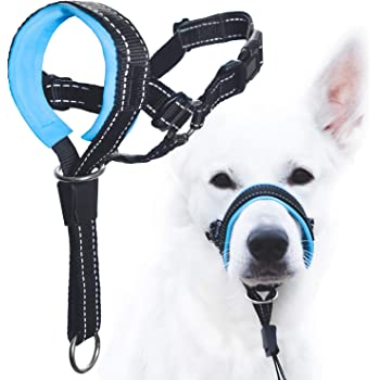 GoodBoy Dog Head Halter with Safety Strap - Stops Heavy Pulling On The Leash - Padded Headcollar for Small Medium and Large Dog Sizes - Head Collar Training Guide Included
