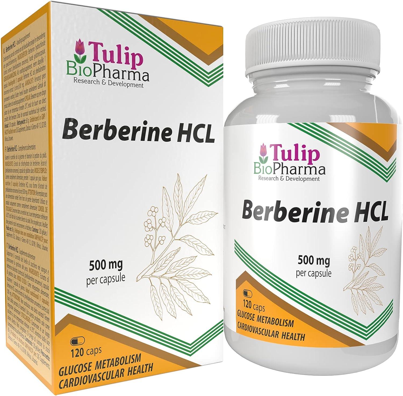 Berberina HCL 500mg 120 cápsulas, LABORATORIAMENTE PROBADO por AGROLAB ALEMANIA, altamente dosificado, no OGM, sin rellenos ni aditivos