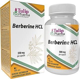 Berberin HCL 500mg 120 kapslar, LABORATORIETESTAT av AGROLAB TYSKLAND, högdoserat, GMO-fritt, inga fyllmedel eller tillsatser