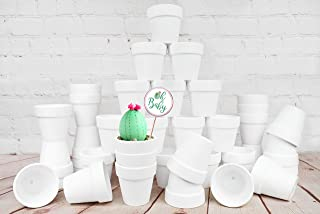 My Urban Crafts 40 Pcs White Terra Cotta Pots Mini 2.5 inch Succulent Pots Small Clay Pot White Ceramic Pots Cactus Planter White Flower Pot Great for Plant Crafts, Wedding Favors (Matte White Bisque)