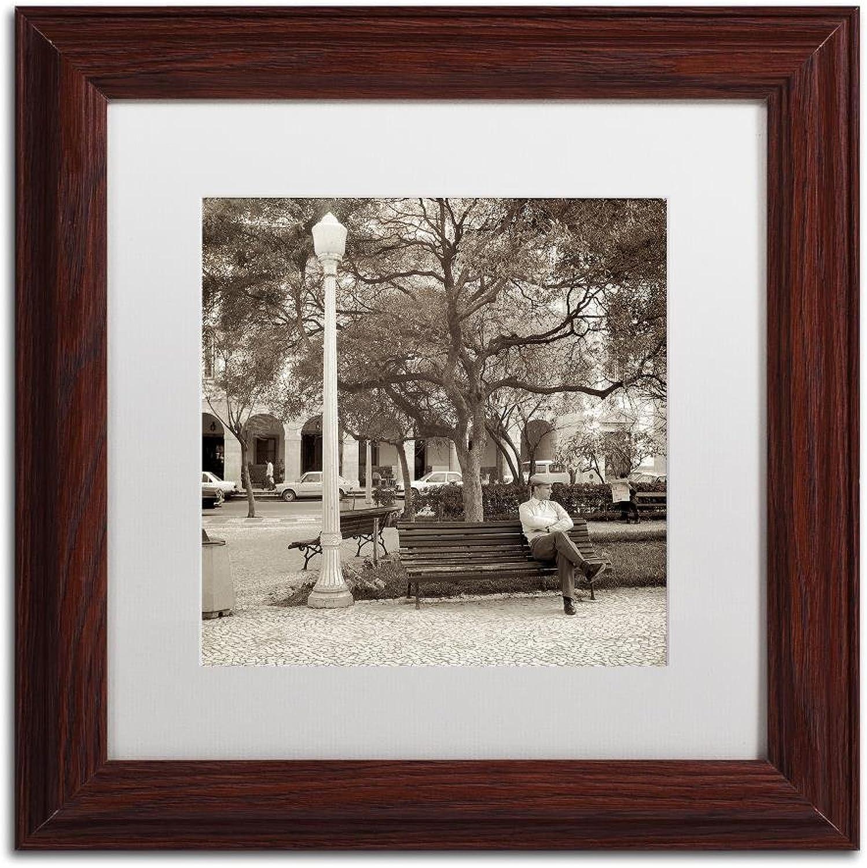 Trademark Fine Art Faro I by Alan bluestein, White Matte, Wood Frame, 11  X 11