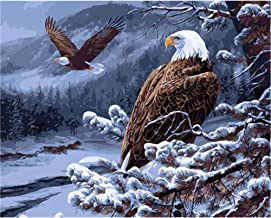 Hwhz Frameless Eagle Animals DIY Painting by Numbers Kits Drawing Painting Picture On Canvas for Home Decoration Unique Wa...