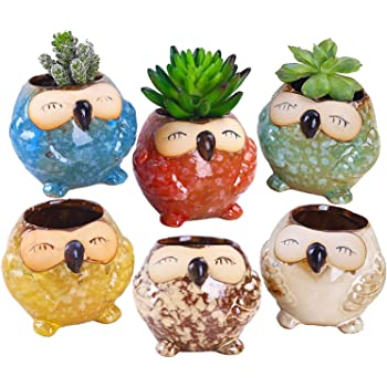 ROSE CREATE 6 Pcs 3 Inches Owl Pots, Little Ceramic Succulent Owl Planters with Drainage Holes - (Big Smile Owls)