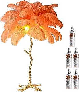 GQCTXHZ Lampadaire en Plumes, Lampadaire d'angle au Design Nordique Moderne avec Ampoules et Interrupteur au Pied, Lampes ...