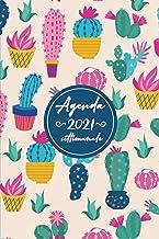 Agenda settimanale 2021: 2021 Pianificatore italiano 12 mesi, 01 Gennaio - 31 dicembre 2021 (Italian Edition)