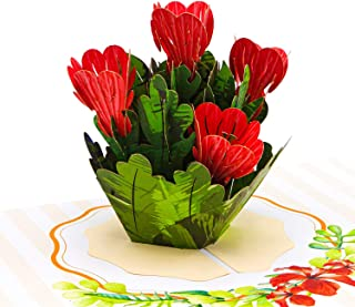 Best just for you flowers Reviews